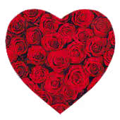 Valentines Day Roses, Flowers, Soft Toys and Chocolates for Nottingham|UK|International Delivery