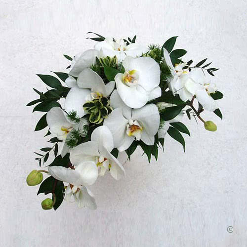 Wedding Bouquet White Orchids